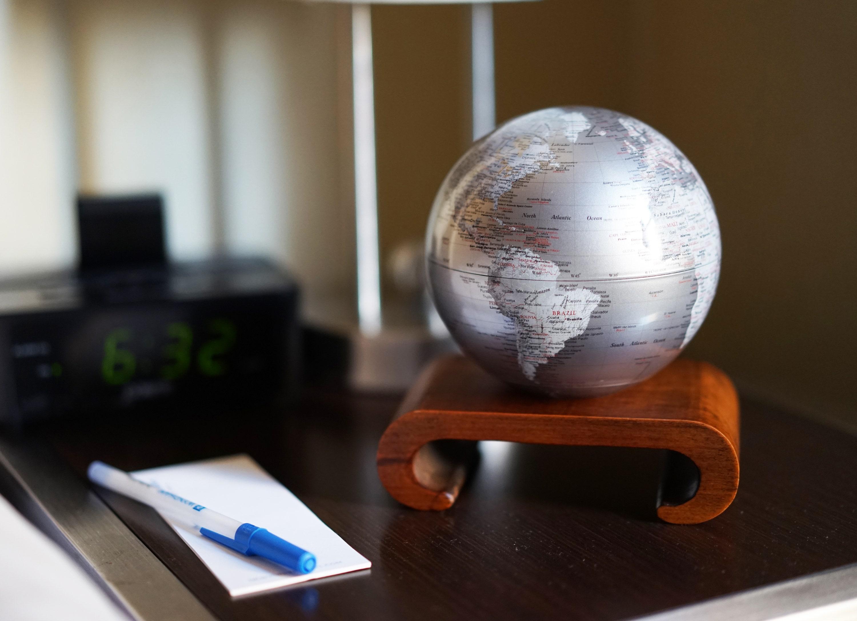 silver mova globe