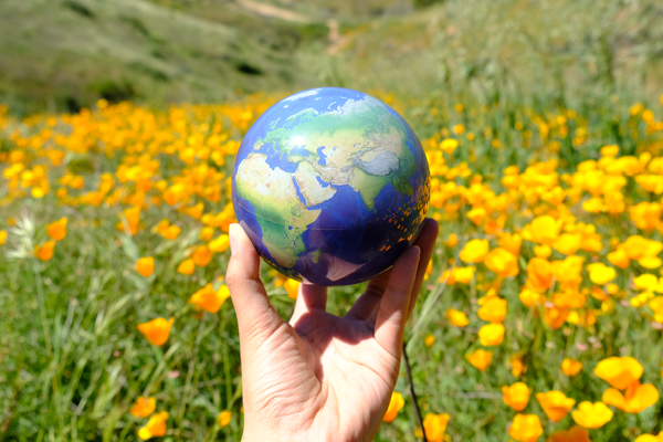 earth mova globe with garden